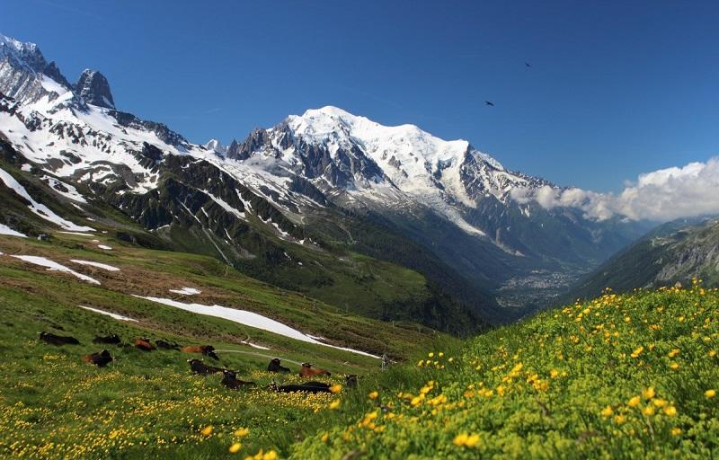 wypoczynek w górach z plecakiem, namiotem i śpiworem turystycznym